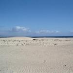 Playa de Corallejo