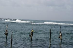 Sarvodaya Sri Lanka CC BY 2.0