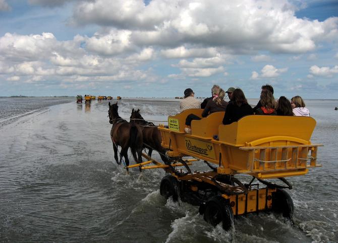 Cuxhaven fkk Strände Cuxhaven