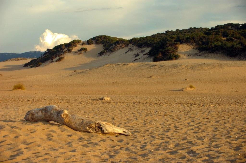 Dünen der Costa Verde auf Sardinien