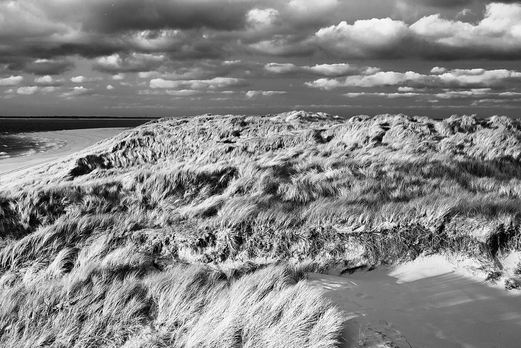 Naturschutzgebiet Ellenbogen bei List auf Sylt