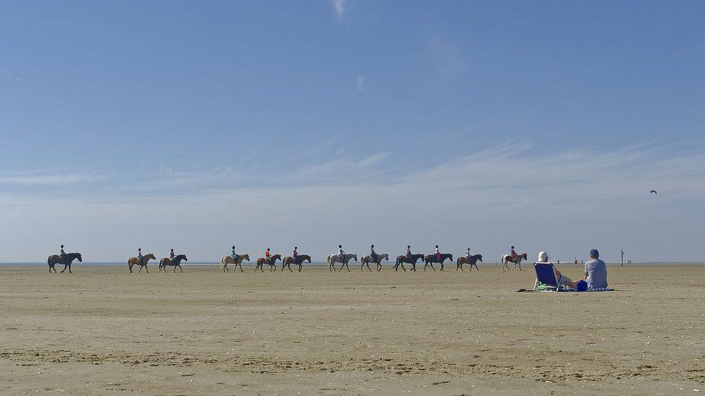 Pferde am Strand von St. Peter-Ording